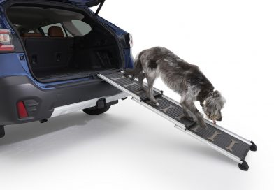Subaru má novou kolekci doplňků pro mazlíčky